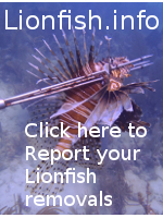 Lionfish Tracking map